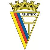 Associação Patinagem Atlético Clube do Tojal